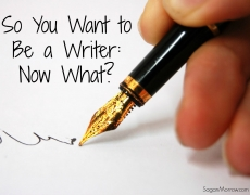 So You Want to Be a Writer: Now What?