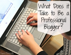 What Does it Take to Be a Professional Blogger?