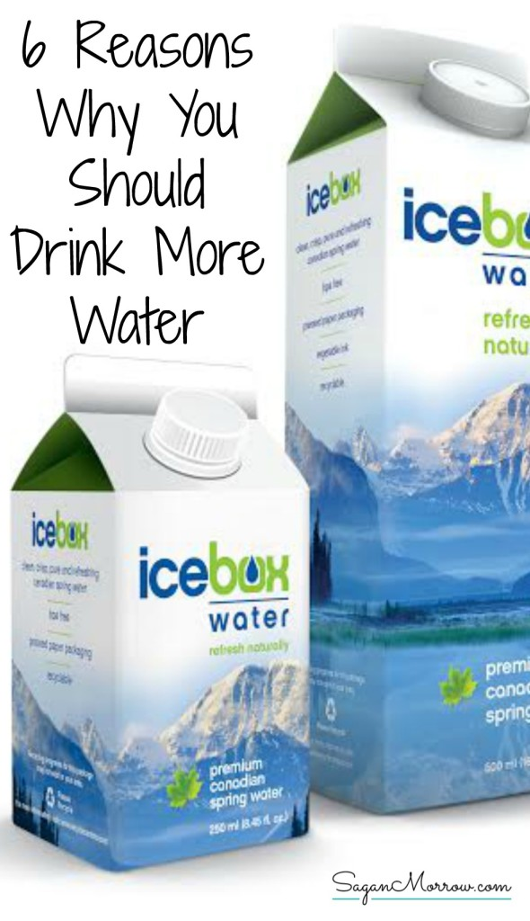 Find out some of the main reasons why you should drink more water in this nutrition article. Plus, in addition to learning about the health benefits of drinking water, find out about Icebox Water: a high-quality water using compostable, eco-friendly packaging ~ healthy living blog ~