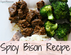 Healthy Spicy Bison Recipe